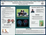The Effects of Secondary Cognitive Tasks on Performance of the 3-Meter Tandem Gait in Concussed and Non-Concussed Individuals by Angel M. Lomeli