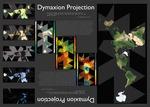 Dymaxion Projection by Brian Murphy, Gilbert Trejo, and Erika Granadino