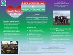 Small Town, Big Hearts: Peer Counseling in Rural Mendocino by Cecelia Gillespie