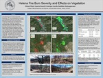 Helena Fire Burn Severity and Effects on Vegetation