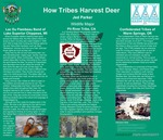How Tribes Harvest Deer by Jed Parker