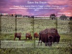 Save the Bison by Queen Nyle Juarez-Ward and Paige Lindner