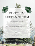 The Pinetum Britannicum by Edward Ravenscroft