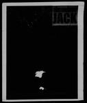 The Lumberjack, October 27, 1999