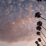 A Sky like Slumber by Tabitha R. Born