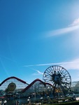 California Adventure by Lexi S. Avila
