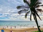 Aloha Summer by Melina Ledwith