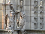Gargoyles of Notre Dame by Holly Donohoe